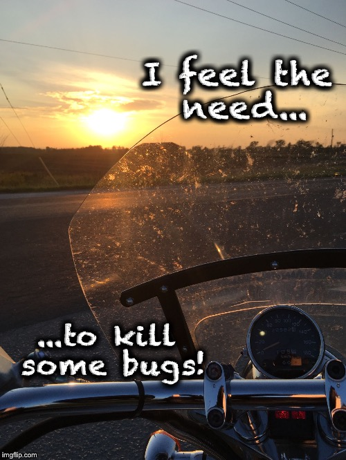 I feel the need... ...to kill some bugs! | image tagged in bugs on the windshield | made w/ Imgflip meme maker