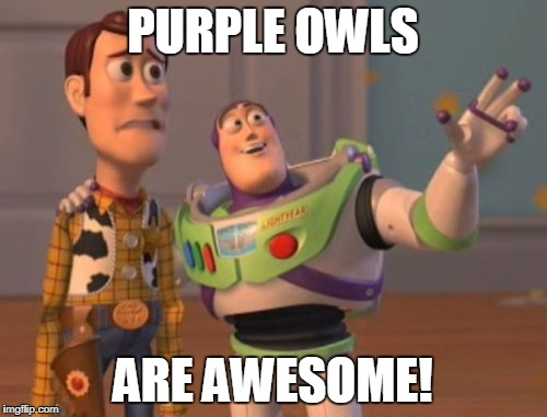 X, X Everywhere Meme | PURPLE OWLS ARE AWESOME! | image tagged in memes,x,x everywhere,x x everywhere | made w/ Imgflip meme maker
