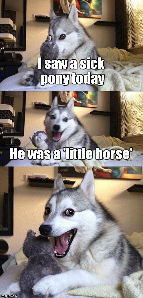 Ba-dum Chiiing! | I saw a sick pony today He was a 'little horse' | image tagged in memes,bad pun dog | made w/ Imgflip meme maker