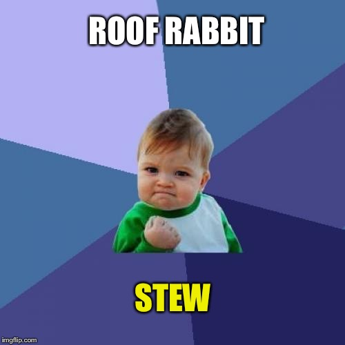 Success Kid Meme | ROOF RABBIT STEW | image tagged in memes,success kid | made w/ Imgflip meme maker