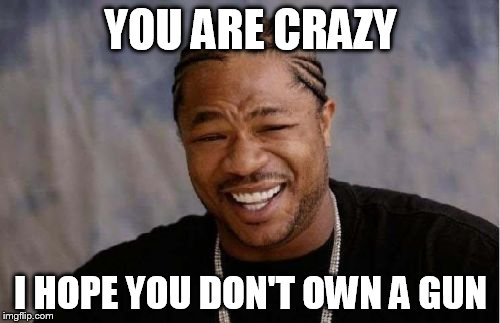 Yo Dawg Heard You Meme | YOU ARE CRAZY I HOPE YOU DON'T OWN A GUN | image tagged in memes,yo dawg heard you | made w/ Imgflip meme maker