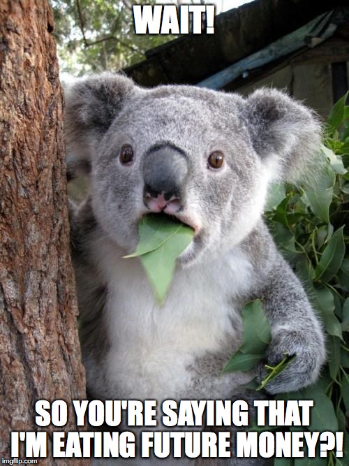 Surprised Koala Meme | WAIT! SO YOU'RE SAYING THAT I'M EATING FUTURE MONEY?! | image tagged in memes,surprised koala | made w/ Imgflip meme maker