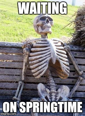 Waiting Skeleton Meme | WAITING ON SPRINGTIME | image tagged in memes,waiting skeleton | made w/ Imgflip meme maker