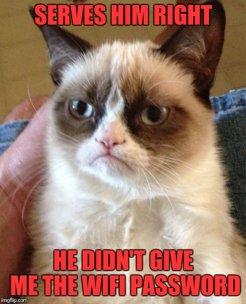 Grumpy Cat Meme | SERVES HIM RIGHT HE DIDN'T GIVE ME THE WIFI PASSWORD | image tagged in memes,grumpy cat | made w/ Imgflip meme maker