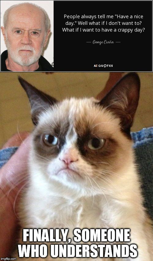 FINALLY, SOMEONE WHO UNDERSTANDS | image tagged in grumpy cat | made w/ Imgflip meme maker