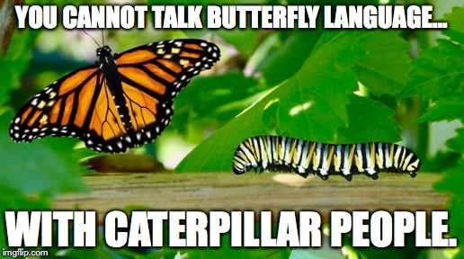 Butterfies VS Caterpillars | YOU CANNOT TALK BUTTERFLY LANGUAGE... WITH CATERPILLAR PEOPLE. | image tagged in intelligence,logic,butterfly,caterpillar | made w/ Imgflip meme maker