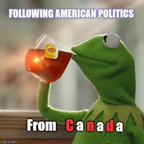 But Thats None Of My Business Meme | FOLLOWING AMERICAN POLITICS From C a n a d a | image tagged in memes,but thats none of my business,kermit the frog | made w/ Imgflip meme maker
