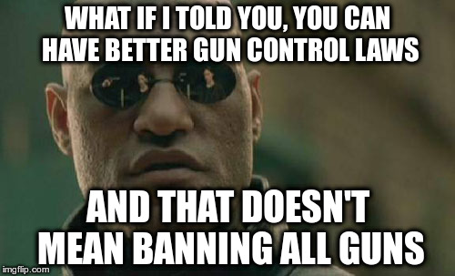 Don't let them divide you | WHAT IF I TOLD YOU, YOU CAN HAVE BETTER GUN CONTROL LAWS AND THAT DOESN'T MEAN BANNING ALL GUNS | image tagged in gun control,common sense,second amendment,matrix morpheus | made w/ Imgflip meme maker