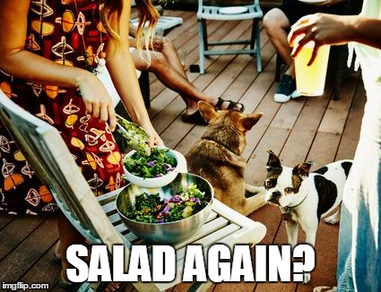 SALAD AGAIN? | made w/ Imgflip meme maker