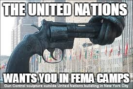 un gun control and fema camps | THE UNITED NATIONS WANTS YOU IN FEMA CAMPS | image tagged in united nations,gun control,fema,alex jones,2nd amendment,guns | made w/ Imgflip meme maker