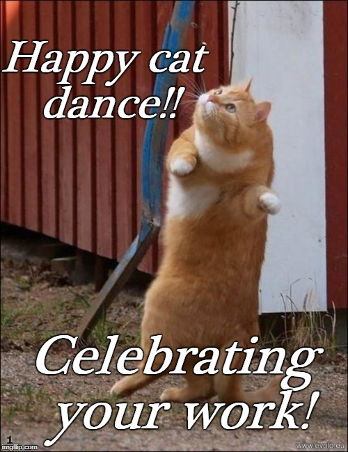 dancing cat | Happy cat dance!! Celebrating your work! | image tagged in dancing cat | made w/ Imgflip meme maker