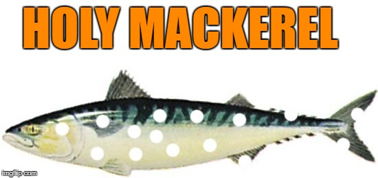 HOLY MACKEREL | made w/ Imgflip meme maker