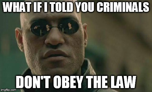 Matrix Morpheus Meme | WHAT IF I TOLD YOU CRIMINALS DON'T OBEY THE LAW | image tagged in memes,matrix morpheus | made w/ Imgflip meme maker