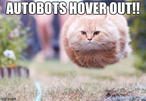 AUTOBOTS HOVER OUT!! | image tagged in hover cat | made w/ Imgflip meme maker
