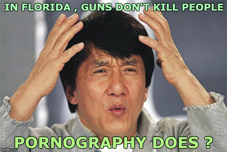 Florida passed a new bill yesterday | IN FLORIDA , GUNS DON'T KILL PEOPLE PORNOGRAPHY DOES ? | image tagged in what the hell,important,porn,kills,gun control,why not both | made w/ Imgflip meme maker