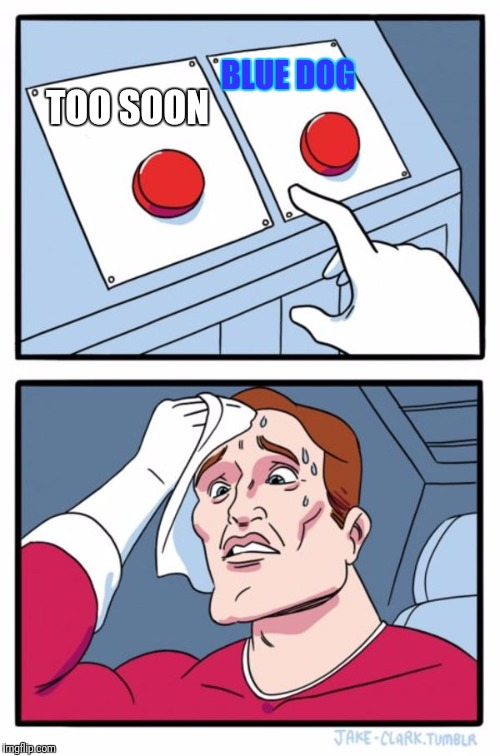 Two Buttons Meme | TOO SOON BLUE DOG | image tagged in memes,two buttons | made w/ Imgflip meme maker