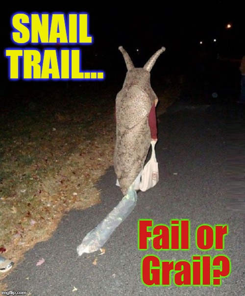 You Grade It... | Fail or Grail? SNAIL TRAIL... | image tagged in vince vance,snail costume,halloween costume,snail walkig down road,happy halloween,costumes | made w/ Imgflip meme maker