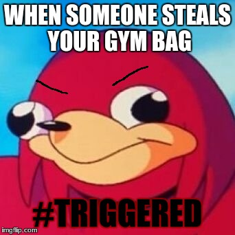 #TRIGGERED | WHEN SOMEONE STEALS YOUR GYM BAG #TRIGGERED | image tagged in ugandan knuckles,bitch stole my gym bag,thieves,triggered | made w/ Imgflip meme maker