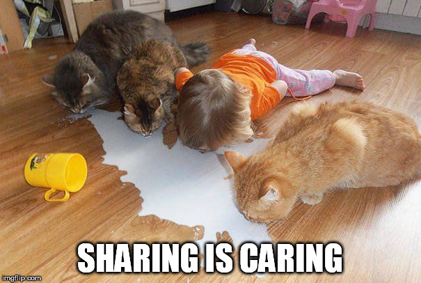 SHARING IS CARING | made w/ Imgflip meme maker