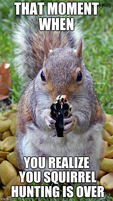funny squirrels with guns (5) | THAT MOMENT WHEN YOU REALIZE YOU SQUIRREL HUNTING IS OVER | image tagged in funny squirrels with guns 5 | made w/ Imgflip meme maker