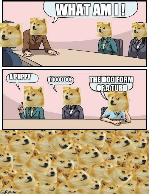 Boardroom Meeting Suggestion Meme |  WHAT AM I ! A PUPPY; A GOOD DOG; THE DOG FORM OF A TURD | image tagged in memes,boardroom meeting suggestion | made w/ Imgflip meme maker