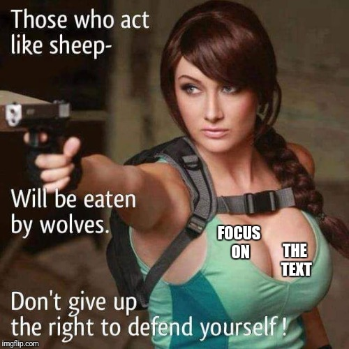 Sheeple | FOCUS ON THE TEXT | image tagged in sheeple | made w/ Imgflip meme maker