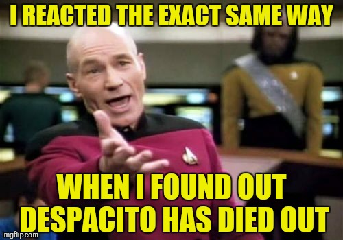 Picard Wtf Meme | I REACTED THE EXACT SAME WAY WHEN I FOUND OUT DESPACITO HAS DIED OUT | image tagged in memes,picard wtf | made w/ Imgflip meme maker