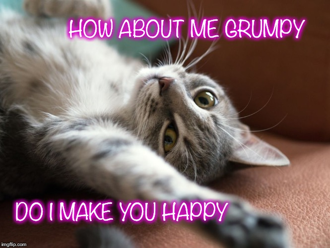 HOW ABOUT ME GRUMPY DO I MAKE YOU HAPPY | made w/ Imgflip meme maker