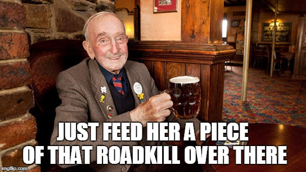 JUST FEED HER A PIECE OF THAT ROADKILL OVER THERE | made w/ Imgflip meme maker