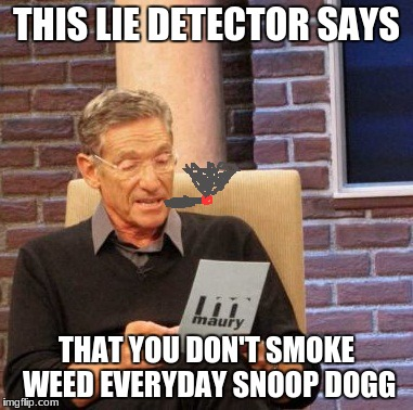 Maury Lie Detector Meme | THIS LIE DETECTOR SAYS THAT YOU DON'T SMOKE WEED EVERYDAY SNOOP DOGG | image tagged in memes,maury lie detector | made w/ Imgflip meme maker