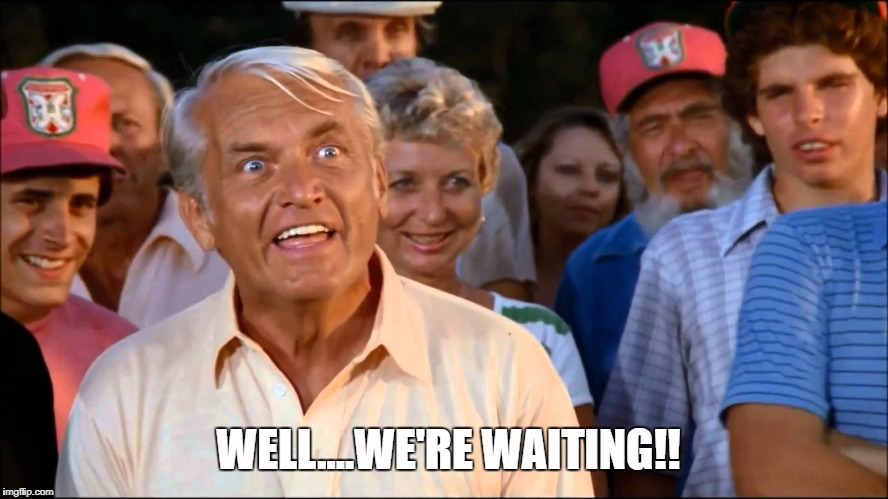 WELL....WE'RE WAITING!! | image tagged in well that escalated quickly,impatient,caddyshack | made w/ Imgflip meme maker