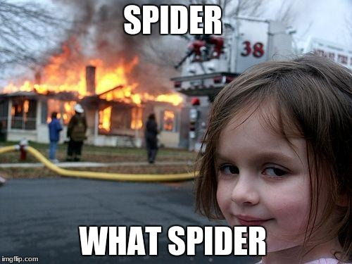 Disaster Girl Meme | SPIDER WHAT SPIDER | image tagged in memes,disaster girl | made w/ Imgflip meme maker