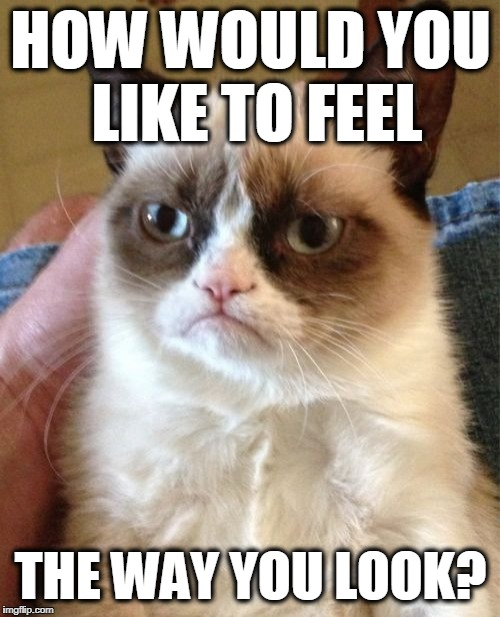 Grumpy Cat Meme | HOW WOULD YOU LIKE TO FEEL THE WAY YOU LOOK? | image tagged in memes,grumpy cat | made w/ Imgflip meme maker