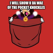 pocket wakanda knuckles | I WILL SHOW U DA WAE OF THE POCKET KNUCKLES | image tagged in pocket wakanda knuckles | made w/ Imgflip meme maker