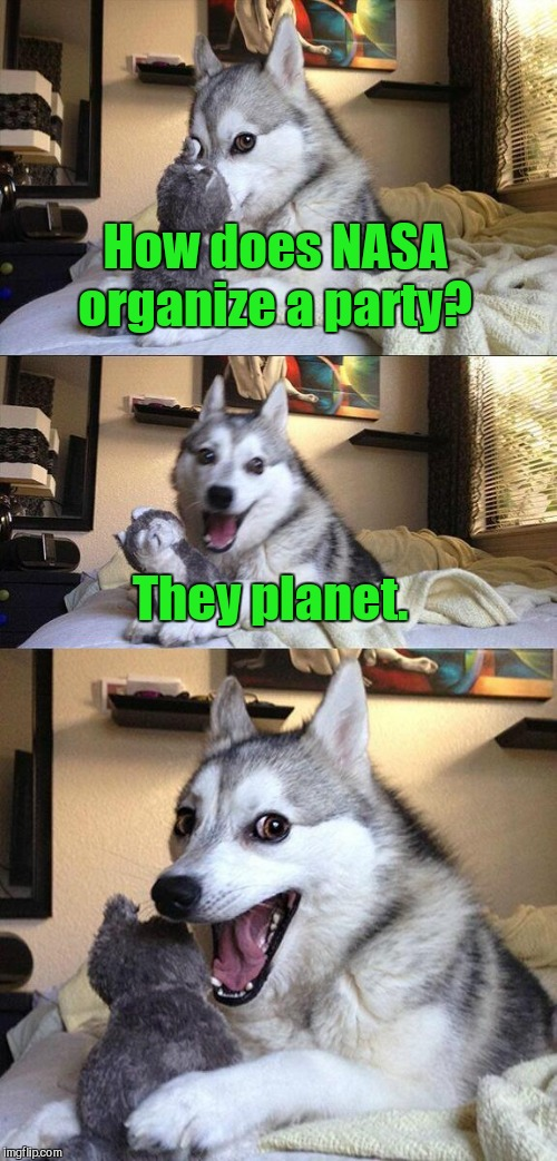 Bad Pun Dog | How does NASA organize a party? They planet. | image tagged in memes,bad pun dog | made w/ Imgflip meme maker