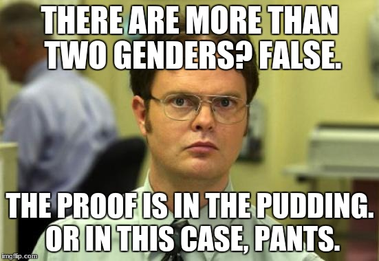 Dwight Schrute Meme | THERE ARE MORE THAN TWO GENDERS? FALSE. THE PROOF IS IN THE PUDDING. OR IN THIS CASE, PANTS. | image tagged in memes,dwight schrute | made w/ Imgflip meme maker