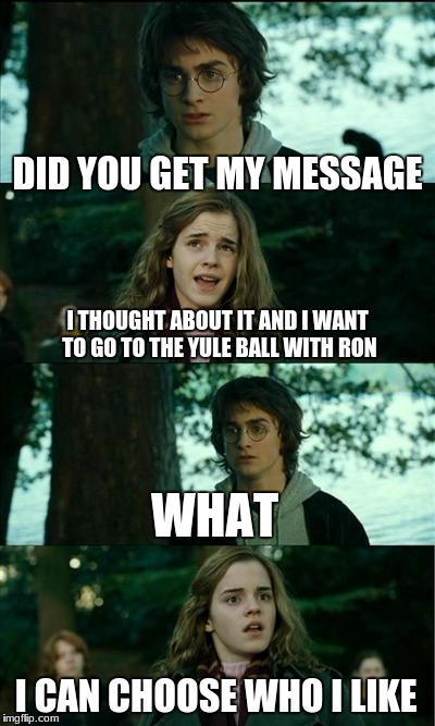 Horny Harry Meme | DID YOU GET MY MESSAGE I THOUGHT ABOUT IT AND I WANT TO GO TO THE YULE BALL WITH RON WHAT I CAN CHOOSE WHO I LIKE | image tagged in memes,horny harry | made w/ Imgflip meme maker