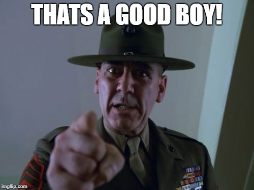 sarge  | THATS A GOOD BOY! | image tagged in sarge | made w/ Imgflip meme maker