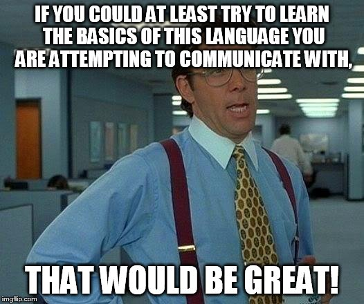 That Would Be Great Meme | IF YOU COULD AT LEAST TRY TO LEARN THE BASICS OF THIS LANGUAGE YOU ARE ATTEMPTING TO COMMUNICATE WITH, THAT WOULD BE GREAT! | image tagged in memes,that would be great | made w/ Imgflip meme maker