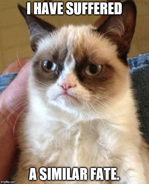 Grumpy Cat Meme | I HAVE SUFFERED A SIMILAR FATE. | image tagged in memes,grumpy cat | made w/ Imgflip meme maker
