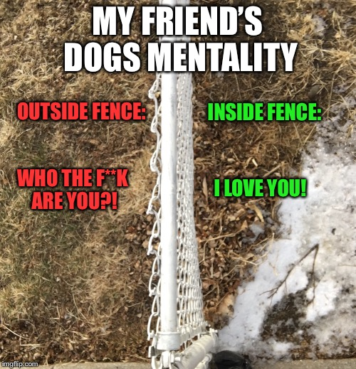 Dog Mentality  | MY FRIEND'S DOGS MENTALITY INSIDE FENCE: OUTSIDE FENCE: I LOVE YOU! WHO THE F**K ARE YOU?! | image tagged in dogs,mental,omaha,winter | made w/ Imgflip meme maker