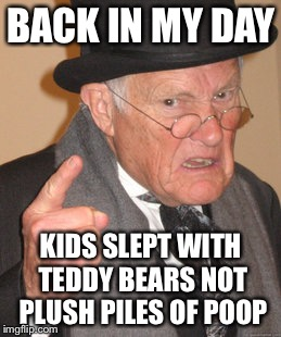 Back In My Day Meme | BACK IN MY DAY KIDS SLEPT WITH TEDDY BEARS NOT PLUSH PILES OF POOP | image tagged in memes,back in my day | made w/ Imgflip meme maker