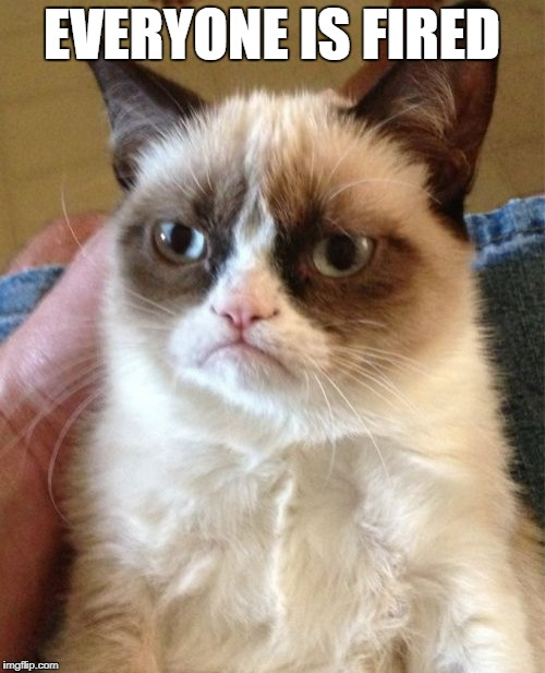 Grumpy Cat Meme | EVERYONE IS FIRED | image tagged in memes,grumpy cat | made w/ Imgflip meme maker