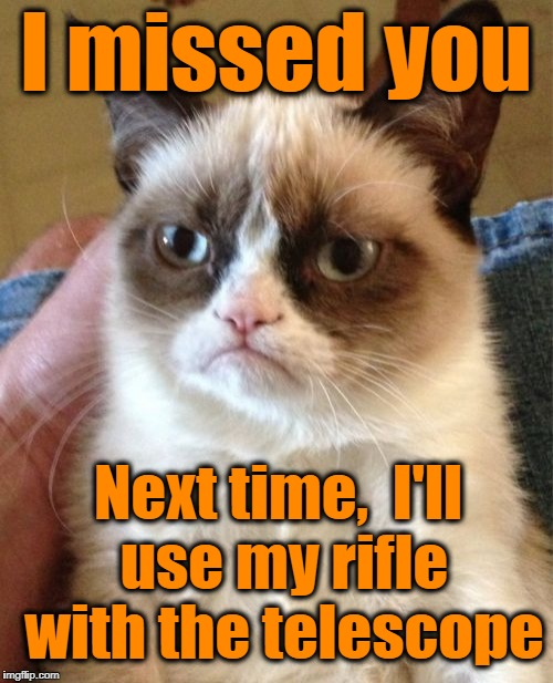 Grumpy Cat Meme | I missed you Next time,  I'll use my rifle with the telescope | image tagged in memes,grumpy cat | made w/ Imgflip meme maker