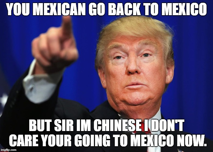 Donald Trump Memes | YOU MEXICAN GO BACK TO MEXICO BUT SIR IM CHINESE I DON'T CARE YOUR GOING TO MEXICO NOW. | image tagged in donald trump | made w/ Imgflip meme maker