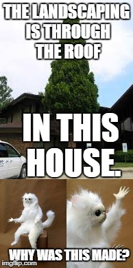 The landscaping is through the roof. | THE LANDSCAPING IS THROUGH THE ROOF IN THIS HOUSE. WHY WAS THIS MADE? | image tagged in shrubbery | made w/ Imgflip meme maker