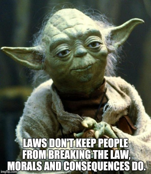 Star Wars Yoda Meme | LAWS DON'T KEEP PEOPLE FROM BREAKING THE LAW, MORALS AND CONSEQUENCES DO. | image tagged in memes,star wars yoda | made w/ Imgflip meme maker