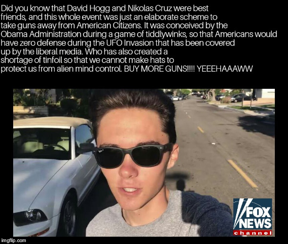 David Hogg Conspiracy | image tagged in david hogg,nra,florida,guns | made w/ Imgflip meme maker