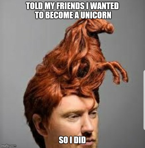 Unicorn man | TOLD MY FRIENDS I WANTED TO BECOME A UNICORN SO I DID | image tagged in unicorn man | made w/ Imgflip meme maker