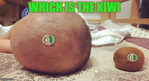 baby vs kiwi | WHICH IS THE KIWI | image tagged in baby,funny memes,kiwi | made w/ Imgflip meme maker